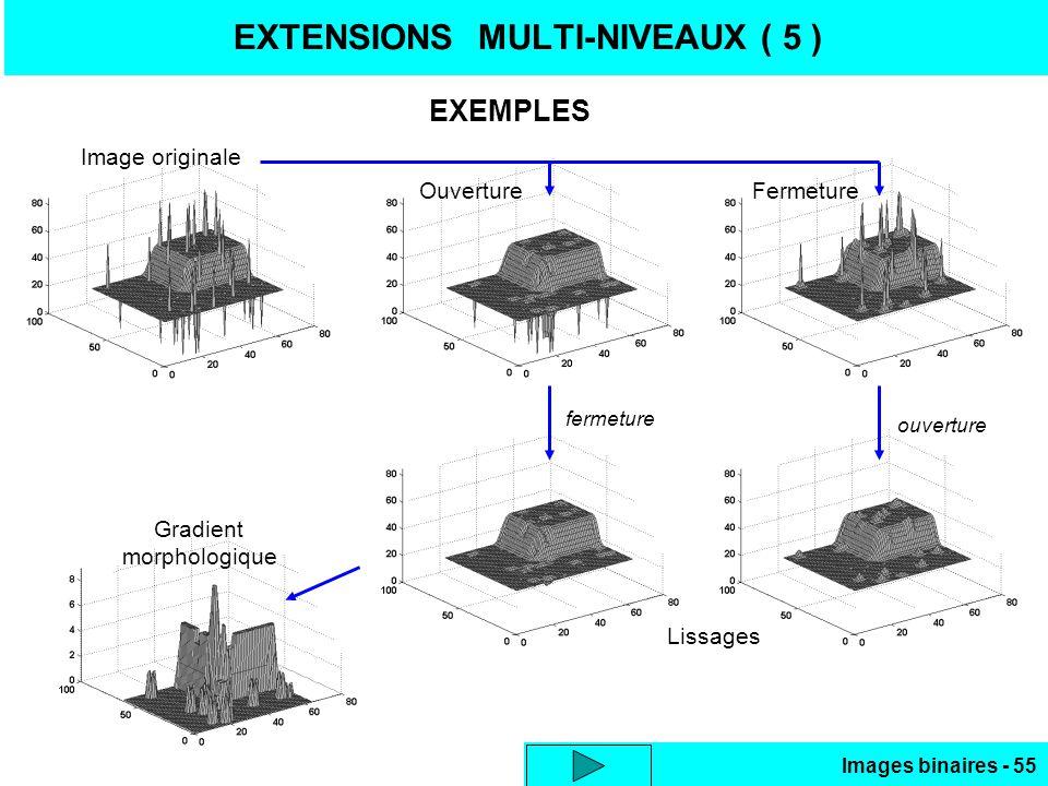 Images binaires - 55 EXTENSIONS MULTI-NIVEAUX ( 5 ) EXEMPLES Image originale OuvertureFermeture Lissages fermeture ouverture Gradient morphologique