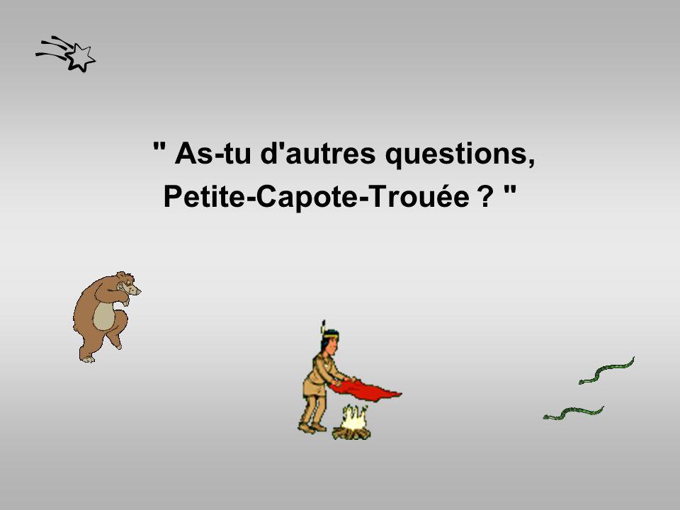 As-tu d autres questions, Petite-Capote-Trouée ?