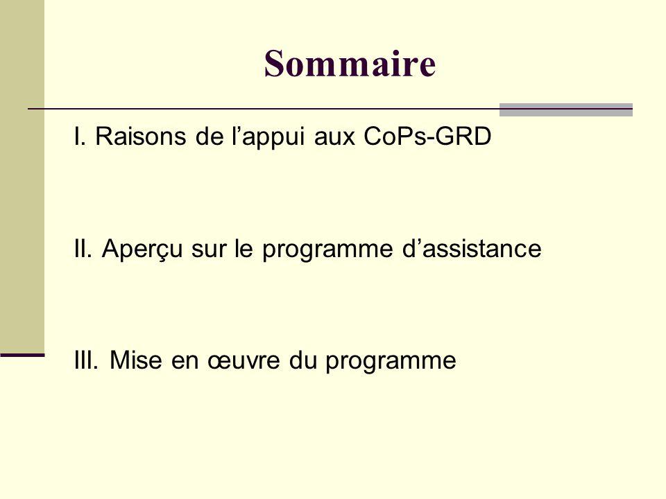 Sommaire I. Raisons de lappui aux CoPs-GRD II. Aperçu sur le programme dassistance III.