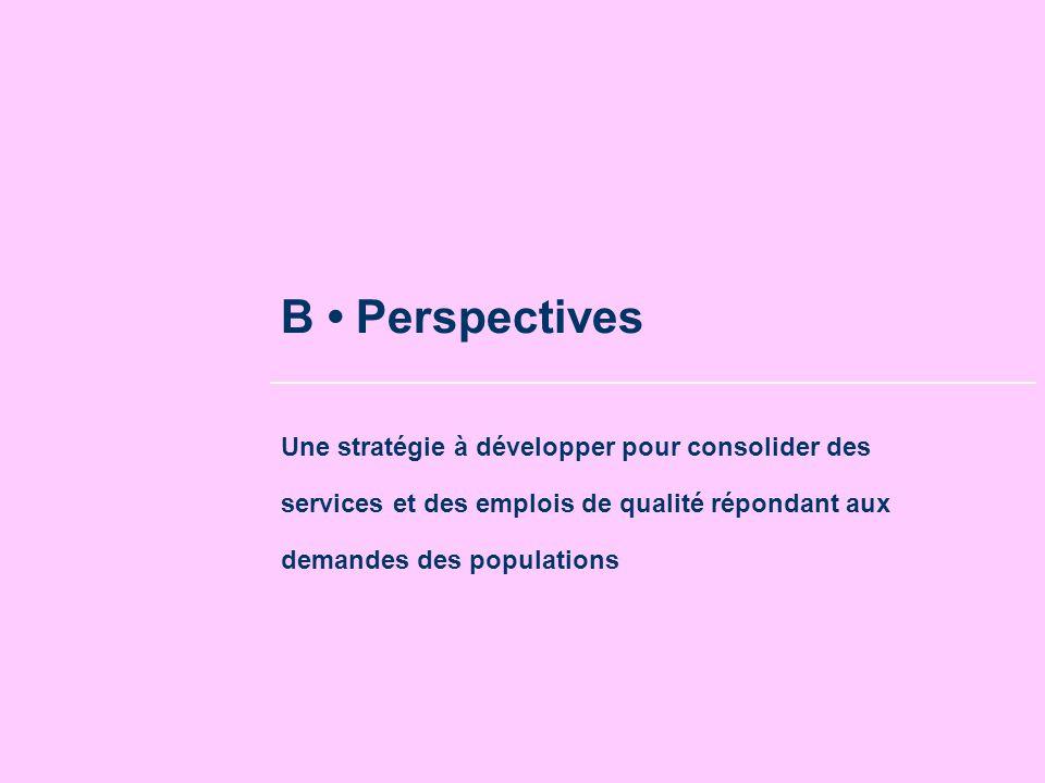 B Perspectives Une stratégie à développer pour consolider des services et des emplois de qualité répondant aux demandes des populations