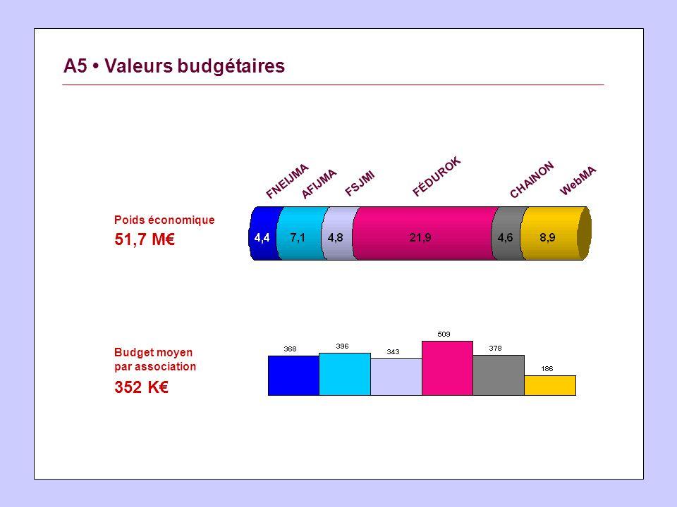 A5 Valeurs budgétaires Poids économique 51,7 M Budget moyen par association 352 K FNEIJMAAFIJMA FSJMI FÉDUROK CHAINON WebMA