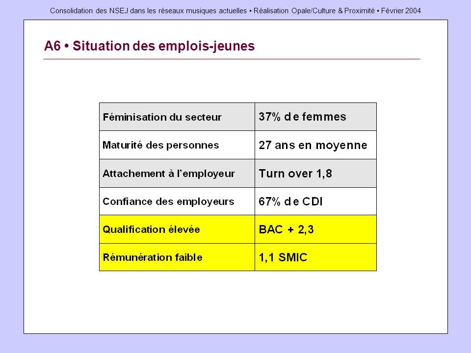 Consolidation des NSEJ dans les réseaux musiques actuelles Réalisation Opale/Culture & Proximité Février 2004 A6 Situation des emplois-jeunes