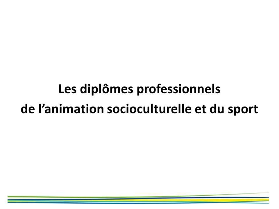 Les diplômes professionnels de lanimation socioculturelle et du sport
