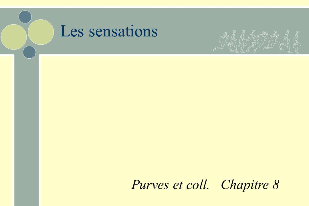 n Varie aussi selon: –partie du corps où le stimulus est appliqué –durée dapplication du stimulus Seuil