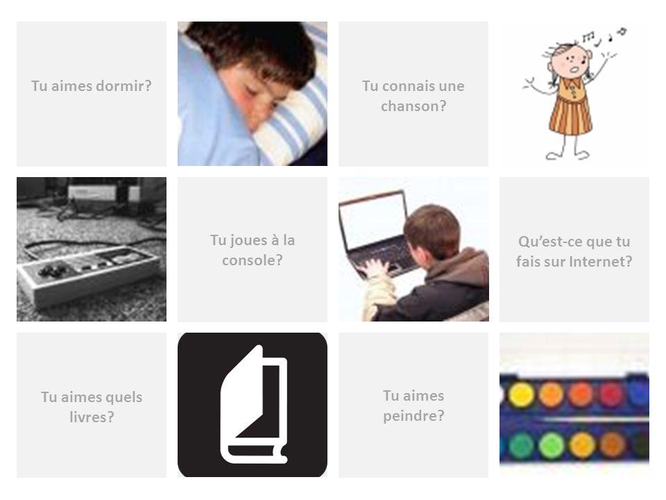 Tu aimes peindre? Tu connais une chanson? Tu aimes dormir? Tu joues à la console? Quest-ce que tu fais sur Internet? Tu aimes quels livres?