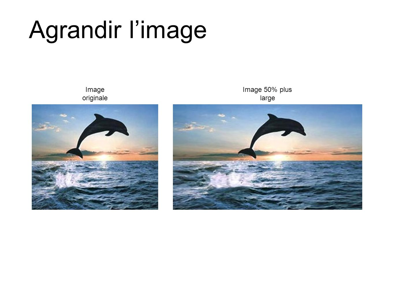 Agrandir limage Image originale Image 50% plus large
