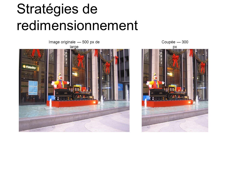 Stratégies de redimensionnement Image originale 500 px de large Coupée 300 px