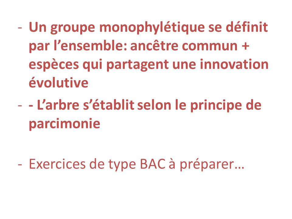 -Un groupe monophylétique se définit par lensemble: ancêtre commun + espèces qui partagent une innovation évolutive -- Larbre sétablit selon le princi