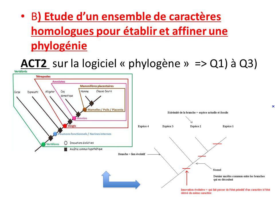 B) Etude dun ensemble de caractères homologues pour établir et affiner une phylogénie ACT2 sur la logiciel « phylogène » => Q1) à Q3)