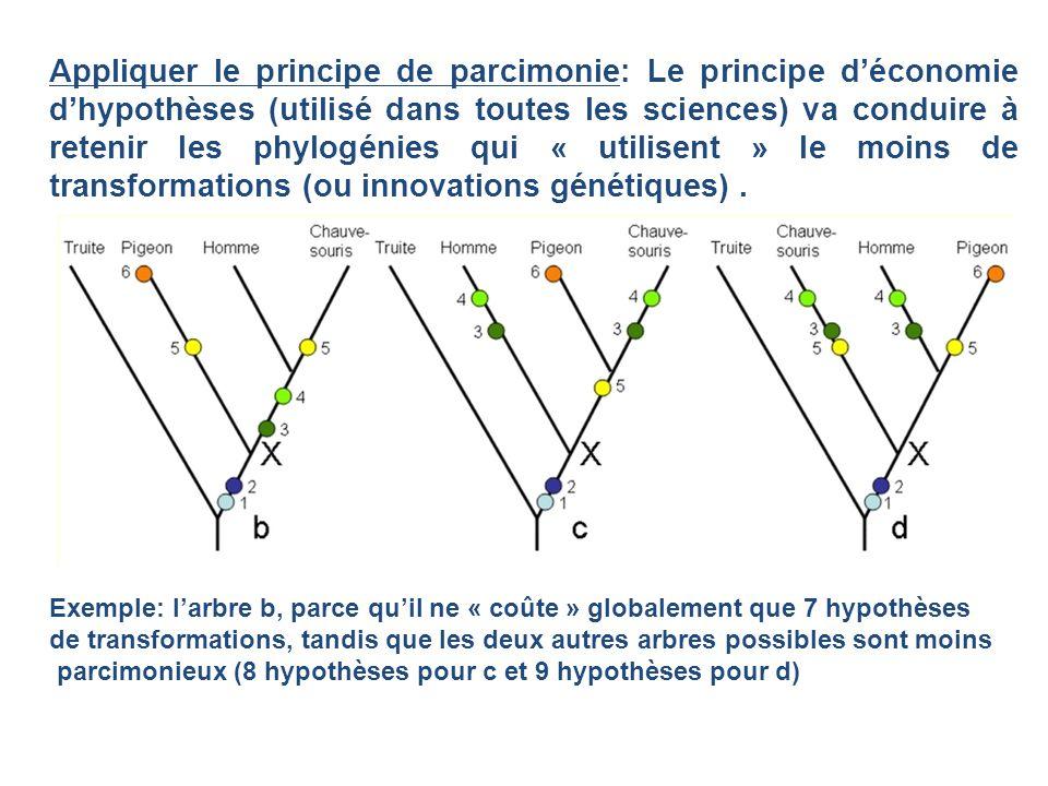 Appliquer le principe de parcimonie: Le principe déconomie dhypothèses (utilisé dans toutes les sciences) va conduire à retenir les phylogénies qui «
