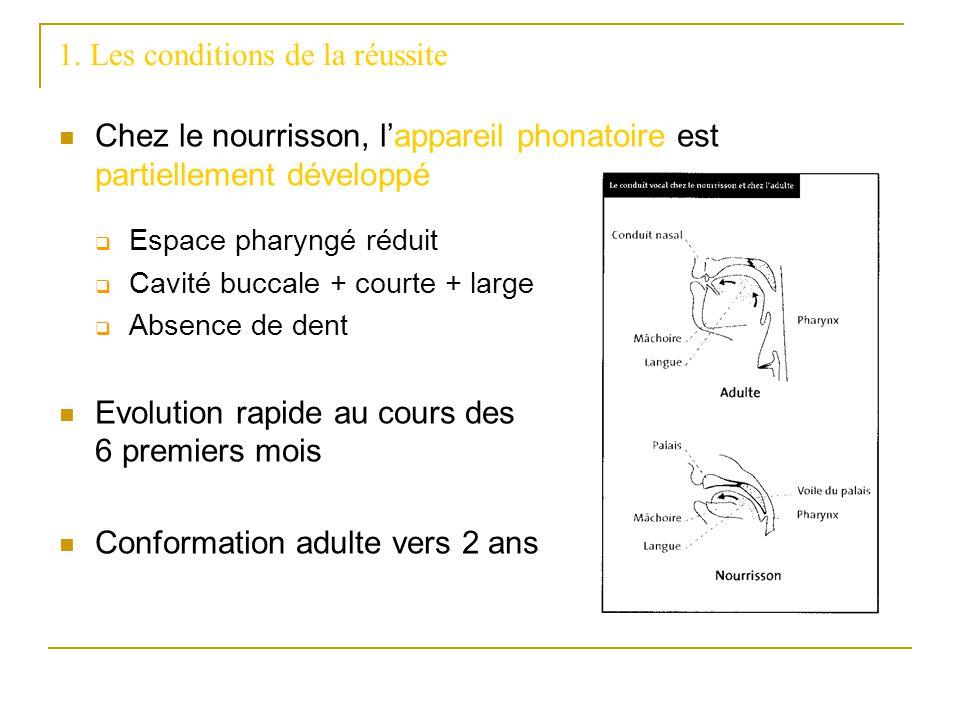 1. Les conditions de la réussite Chez le nourrisson, lappareil phonatoire est partiellement développé Espace pharyngé réduit Cavité buccale + courte +