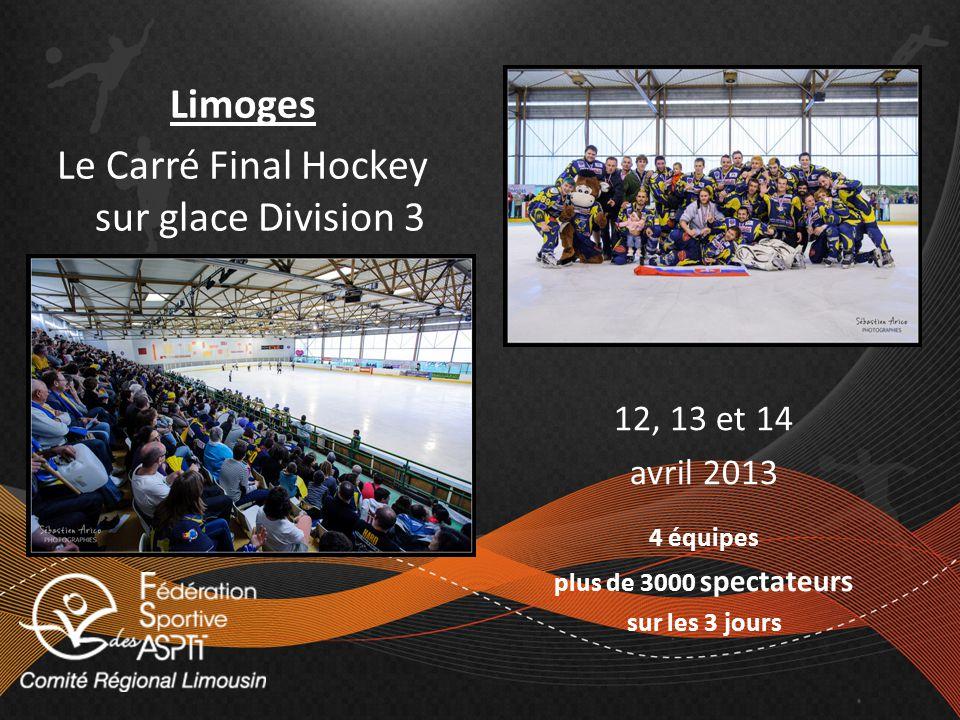 Limoges Le Carré Final Hockey sur glace Division 3 12, 13 et 14 avril 2013 4 équipes plus de 3000 spectateurs sur les 3 jours
