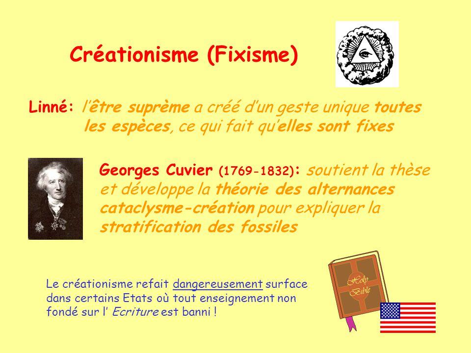 EVOLUTION: Fait quil apparaît de nouvelles espèces, et que celles-ci dérivent dautres espèces Charles Darwin (1809-1882) Alfred Wallace (1823-1913) arguments: paléontologiques anatomiques embryologiques physiologiques biochimiques génétiques.....