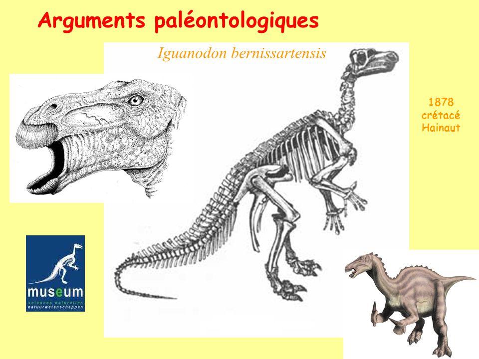 Iguanodon bernissartensis Arguments paléontologiques 1878 crétacé Hainaut