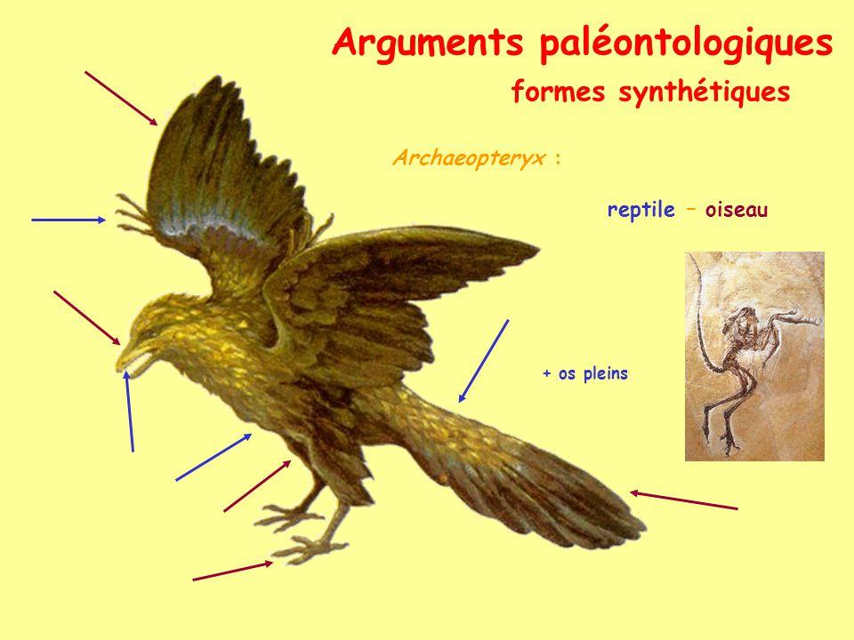 Arguments paléontologiques fossiles vivants Coelacanthe (Latimeria chalumnae) (à voir au Musée, Quai Van Beneden, cfr TP) forme fossile