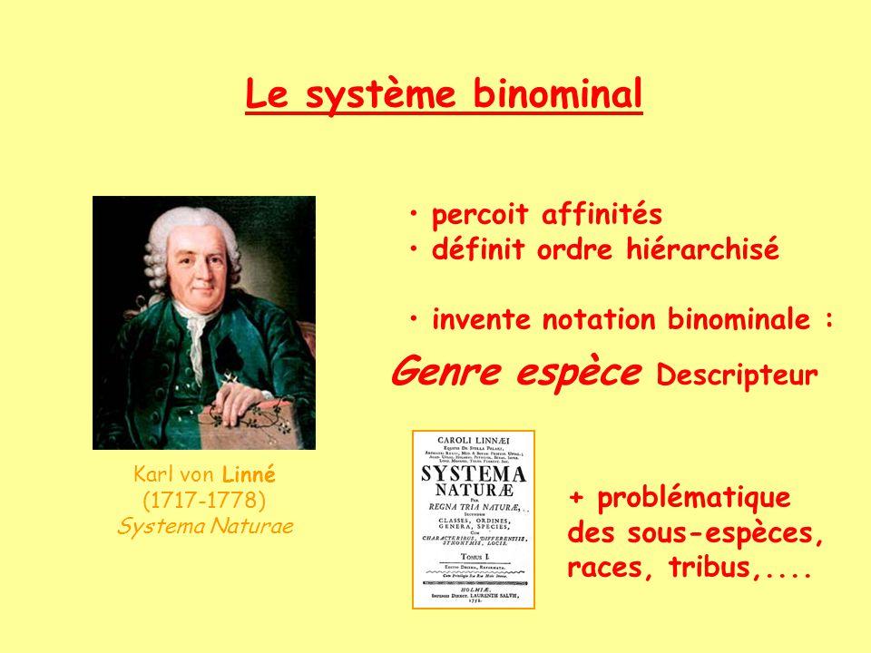 La classification exemple 1 exemple 2 Latin >< vernaculaire