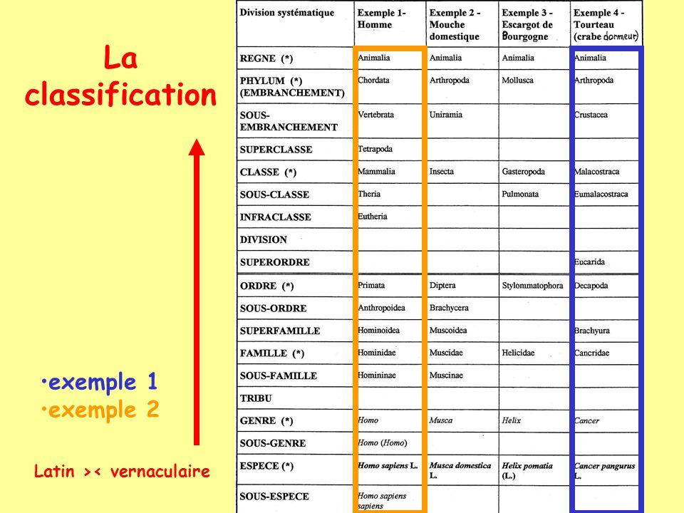 « Lespèce » Problème de la fécondabilité interspécifique chez Vég.