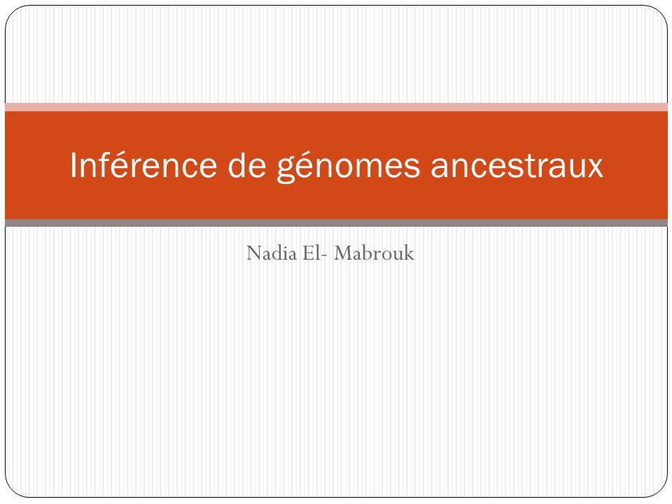 Nadia El- Mabrouk Inférence de génomes ancestraux