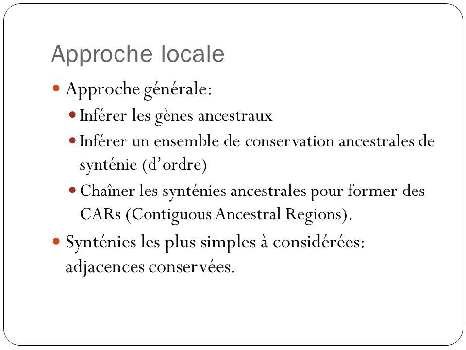 Approche locale Approche générale: Inférer les gènes ancestraux Inférer un ensemble de conservation ancestrales de synténie (dordre) Chaîner les synténies ancestrales pour former des CARs (Contiguous Ancestral Regions).