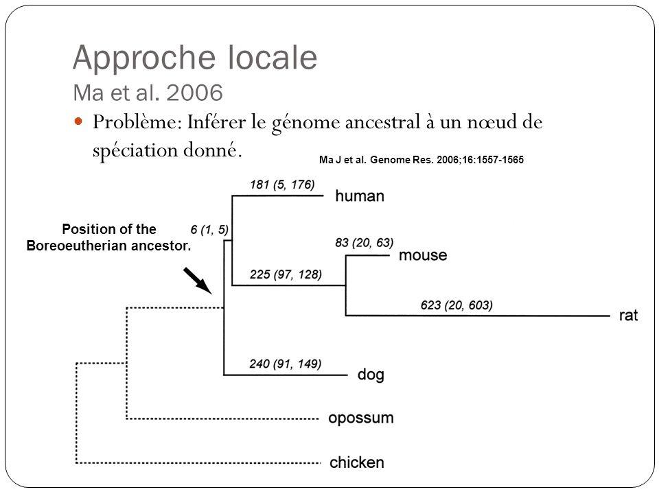 Approche locale Ma et al.2006 Problème: Inférer le génome ancestral à un nœud de spéciation donné.