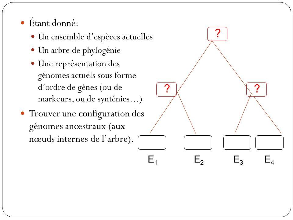 Étant donné: Un ensemble despèces actuelles Un arbre de phylogénie Une représentation des génomes actuels sous forme dordre de gènes (ou de markeurs, ou de synténies…) Trouver une configuration des génomes ancestraux (aux nœuds internes de larbre).