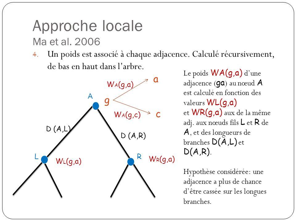 Approche locale Ma et al.2006 4. Un poids est associé à chaque adjacence.