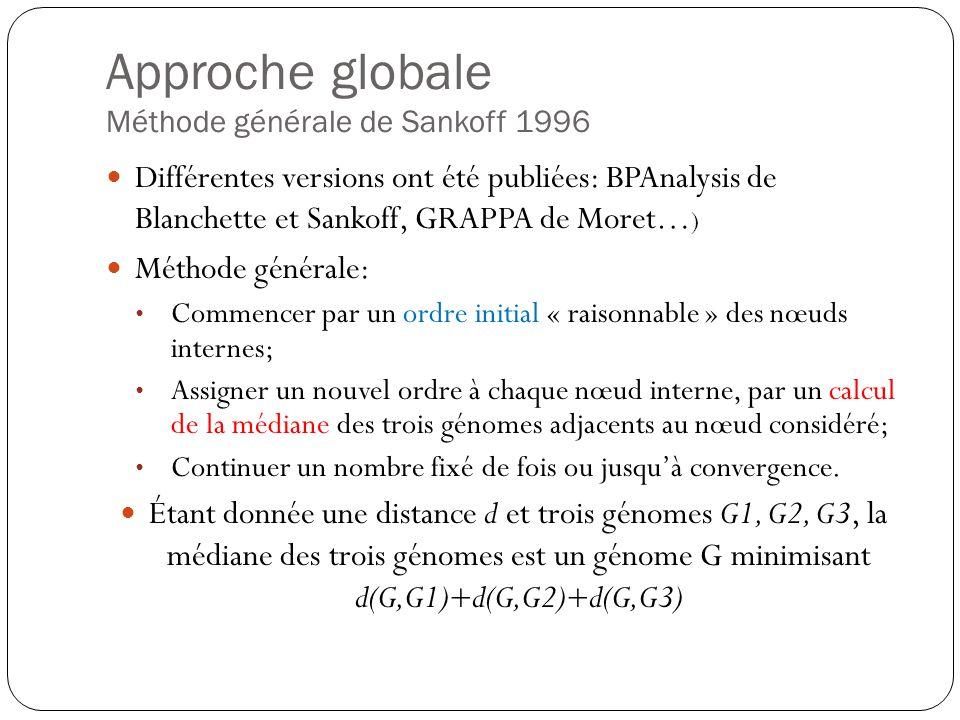 Approche globale Méthode générale de Sankoff 1996 Différentes versions ont été publiées: BPAnalysis de Blanchette et Sankoff, GRAPPA de Moret… ) Méthode générale: Commencer par un ordre initial « raisonnable » des nœuds internes; Assigner un nouvel ordre à chaque nœud interne, par un calcul de la médiane des trois génomes adjacents au nœud considéré; Continuer un nombre fixé de fois ou jusquà convergence.