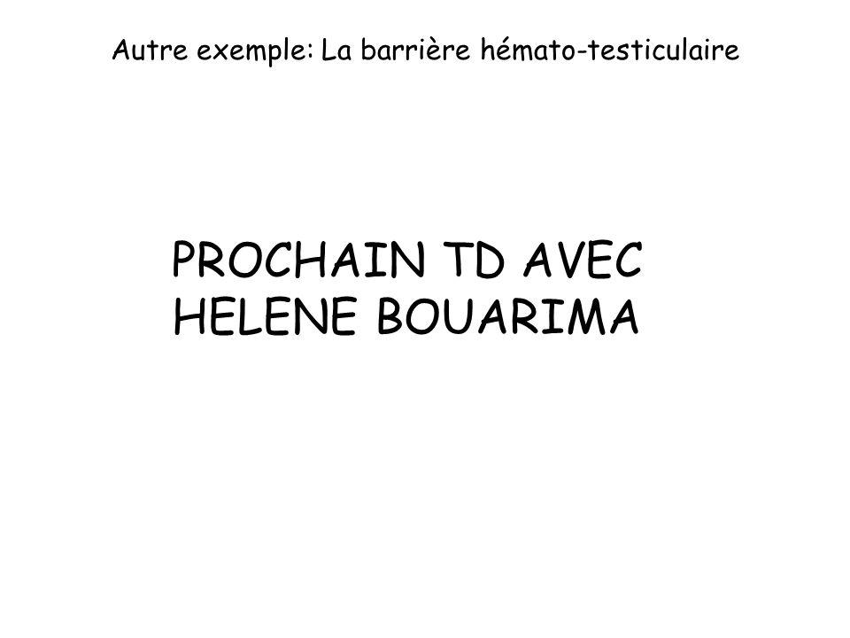 Autre exemple: La barrière hémato-testiculaire PROCHAIN TD AVEC HELENE BOUARIMA