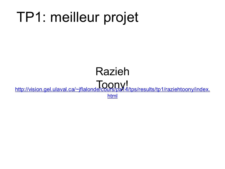 TP1: meilleur projet Razieh Toony.
