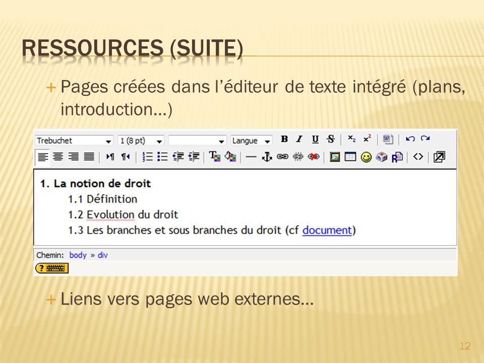 Pages créées dans léditeur de texte intégré (plans, introduction…) Liens vers pages web externes… 12