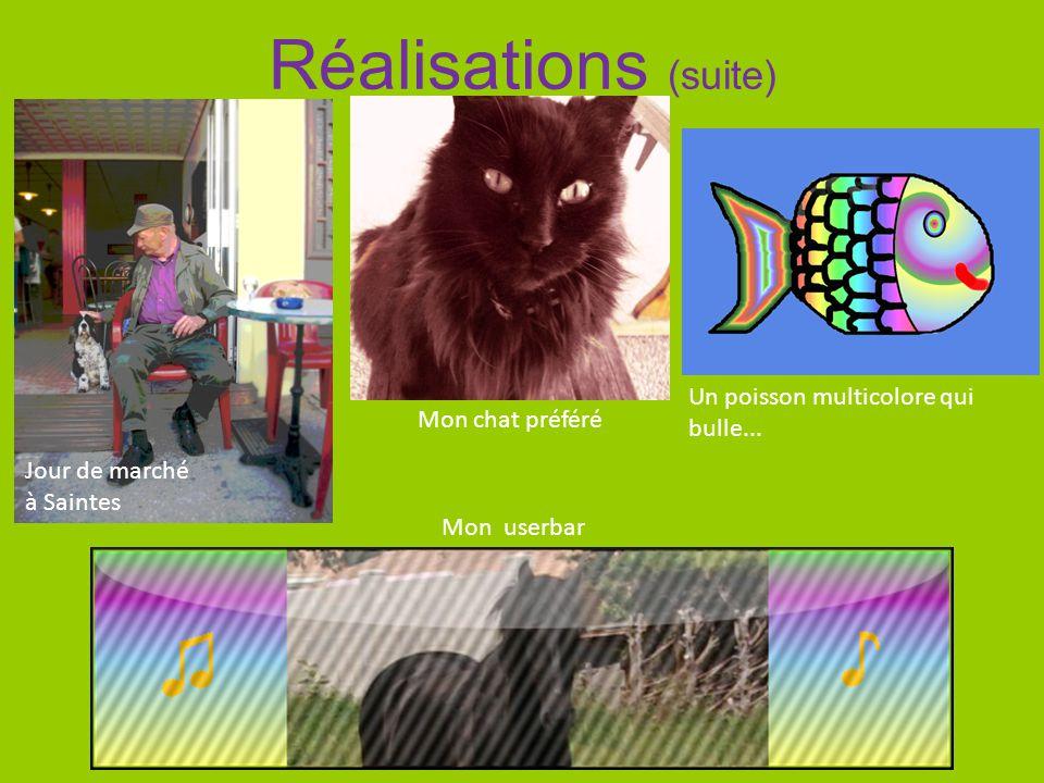 Réalisations (suite) Mon chat préféré Jour de marché à Saintes Un poisson multicolore qui bulle... Mon userbar