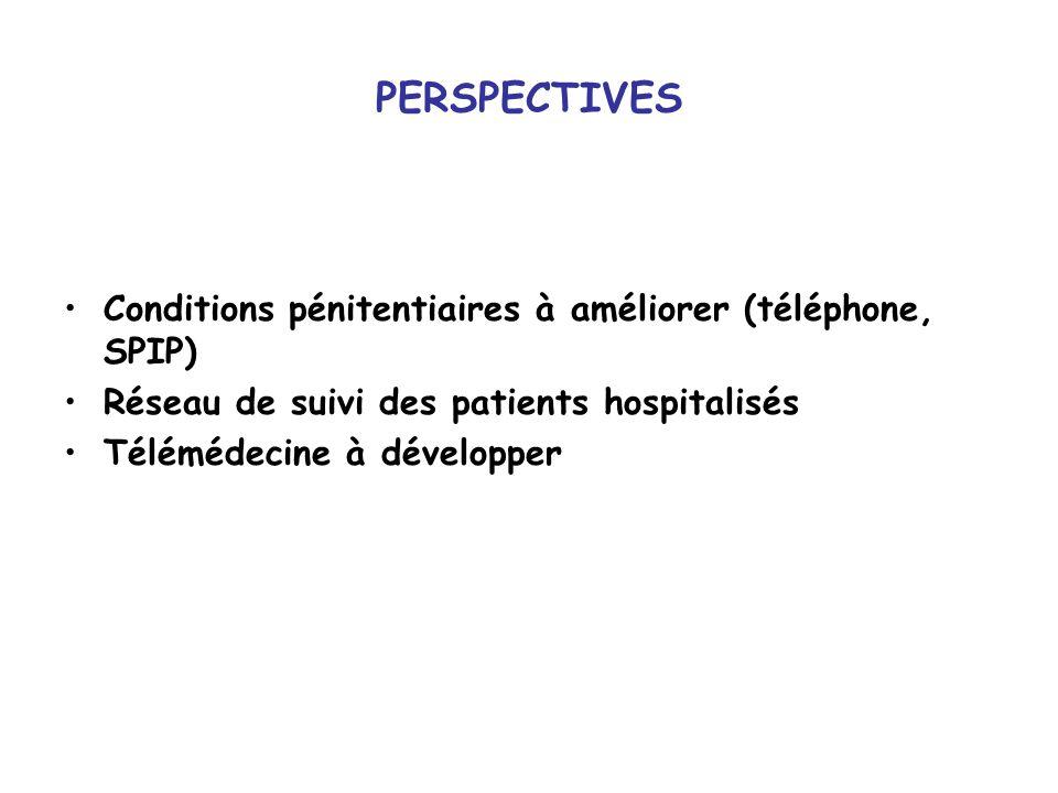 PERSPECTIVES Conditions pénitentiaires à améliorer (téléphone, SPIP) Réseau de suivi des patients hospitalisés Télémédecine à développer