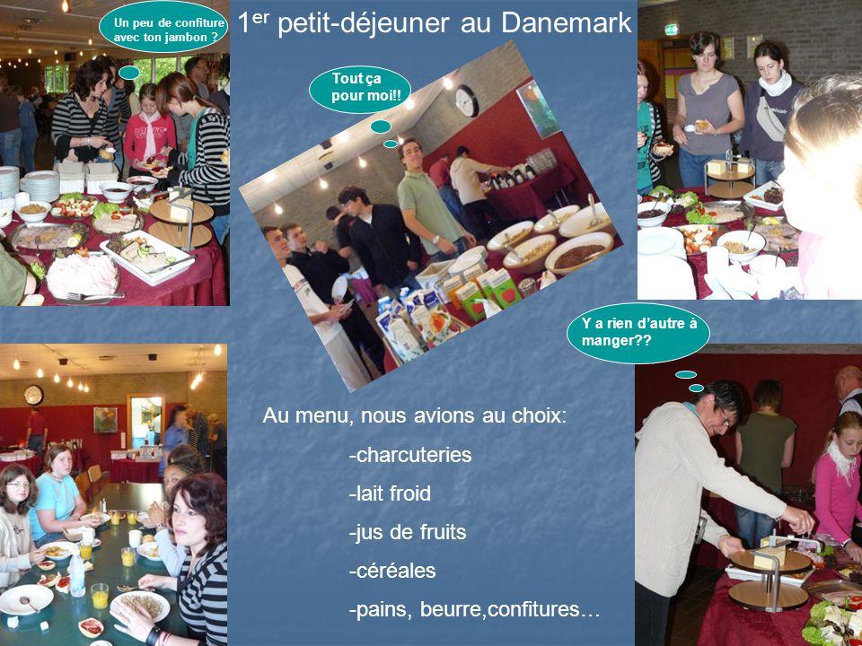 1 er petit-déjeuner au Danemark Au menu, nous avions au choix: -charcuteries -lait froid -jus de fruits -céréales -pains, beurre,confitures… Tout ça pour moi!.