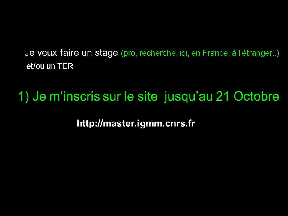 1) Je minscris sur le site jusquau 21 Octobre Je veux faire un stage (pro, recherche, ici, en France, à létranger..) et/ou un TER