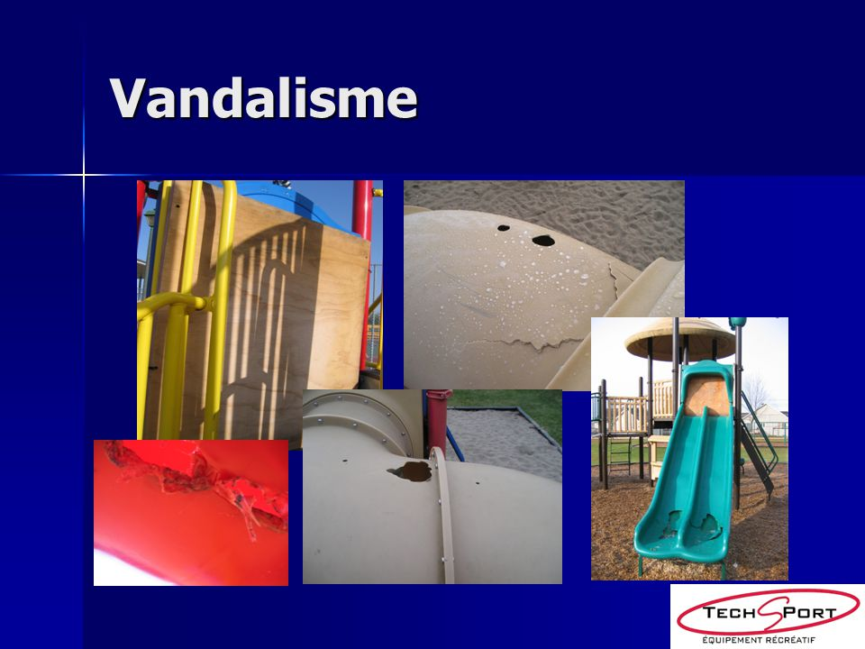 Types de vandalisme Graffitis Graffitis Feu Feu Destruction Destruction
