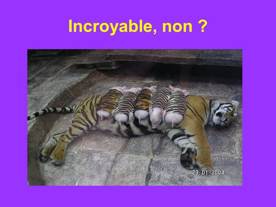 Incroyable, non
