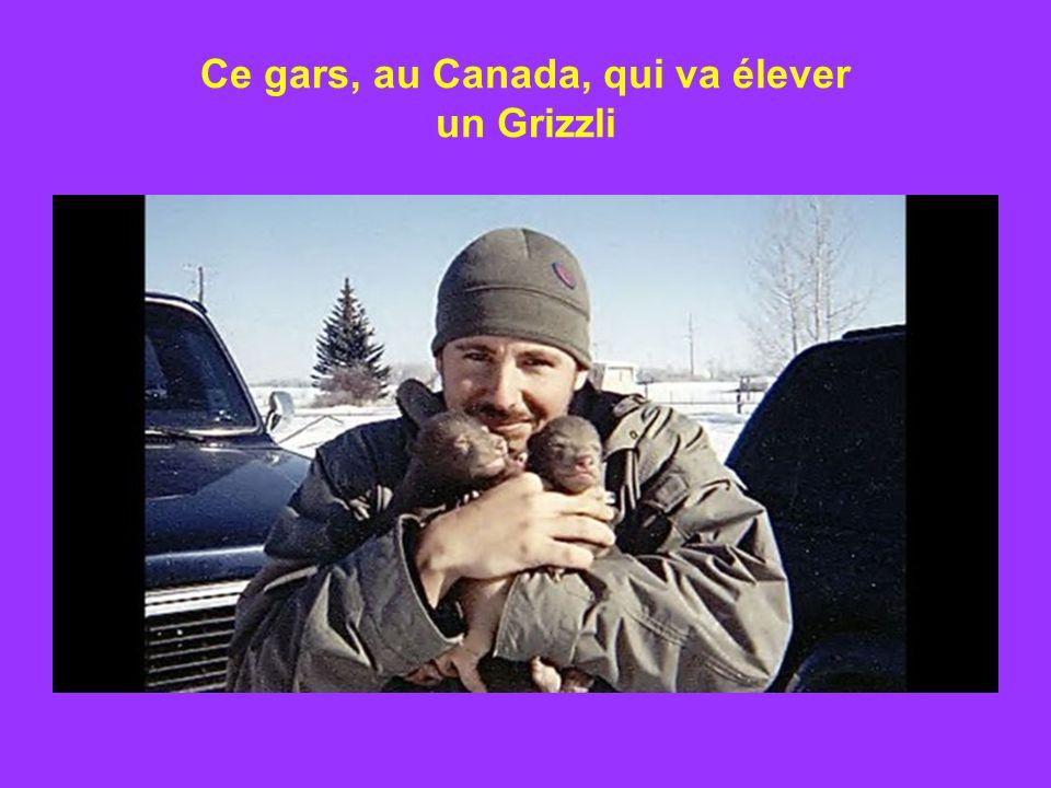 Ce gars, au Canada, qui va élever un Grizzli