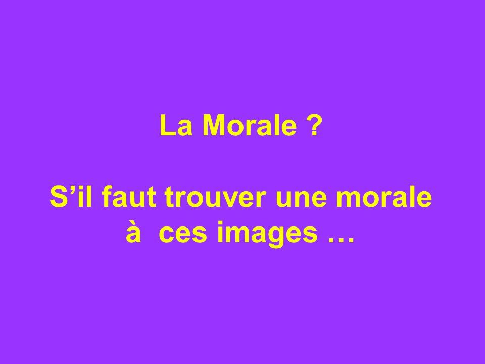 La Morale Sil faut trouver une morale à ces images …