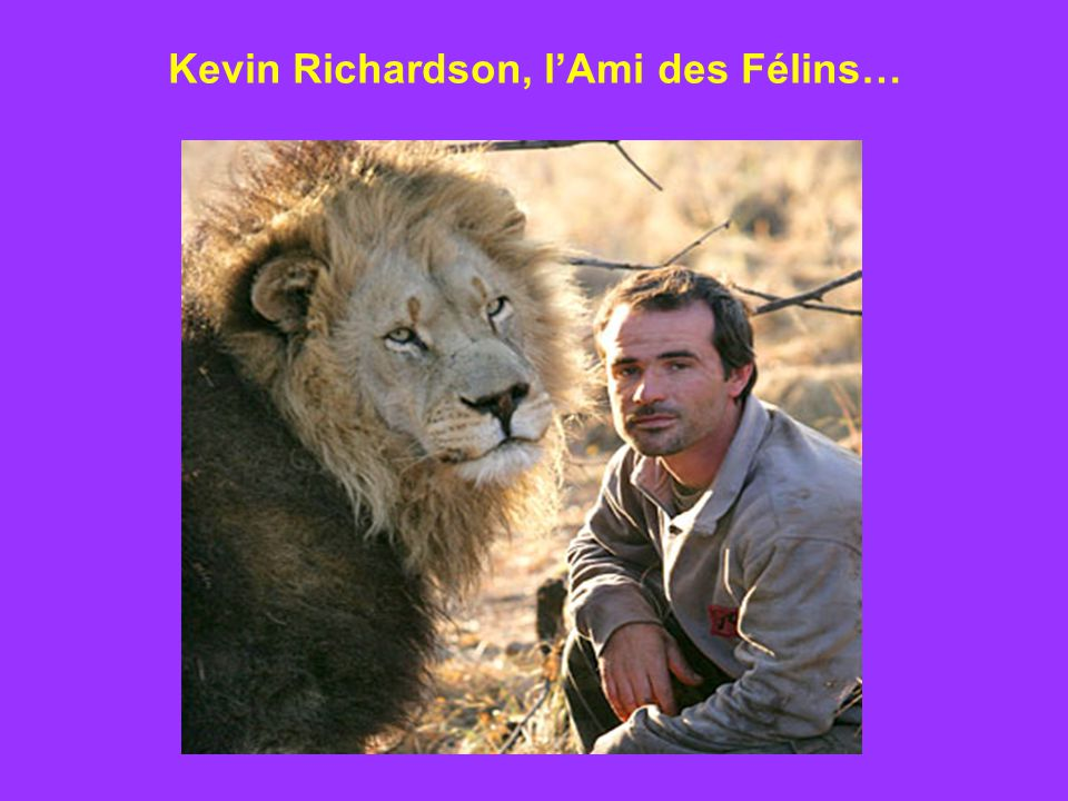 Kevin Richardson, lAmi des Félins…