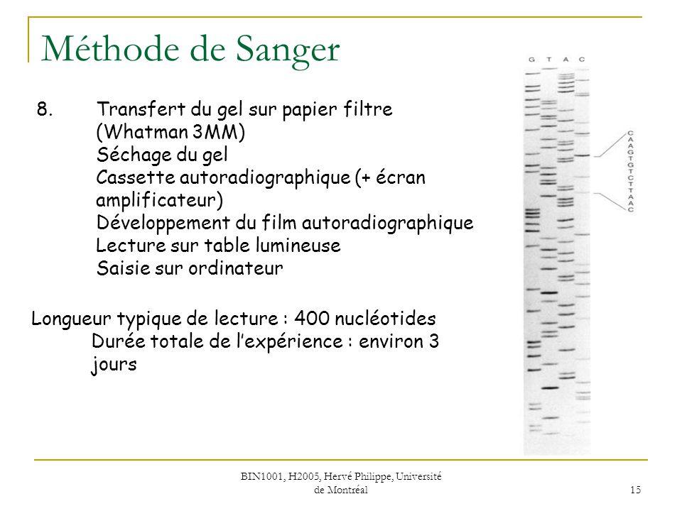 BIN1001, H2005, Hervé Philippe, Université de Montréal 16 Séquençage de grands fragments Marche sur le chromosome 10 kpb Synthèse de 2 * 10 amorces Durée totale du séquençage : > 11 * 3 jours Qualité des séquences Lecture double brin ~ 3 mois