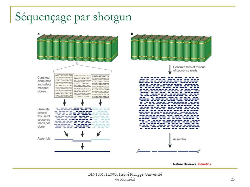 BIN1001, H2005, Hervé Philippe, Université de Montréal 25 Séquençage par shotgun