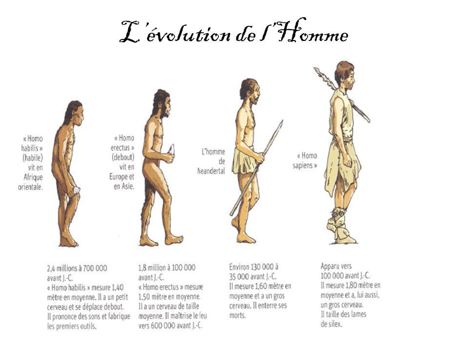 Lévolution de lHomme
