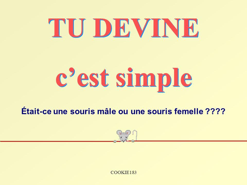 COOKIE183 Était-ce une souris mâle ou une souris femelle ????