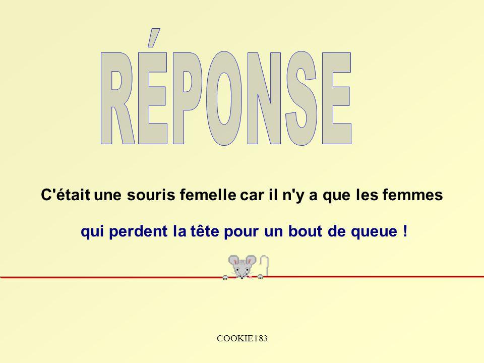 COOKIE183 Était-ce une souris mâle ou une souris femelle ???.