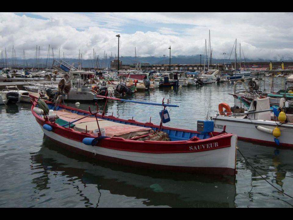 Pêche sportive à Porto