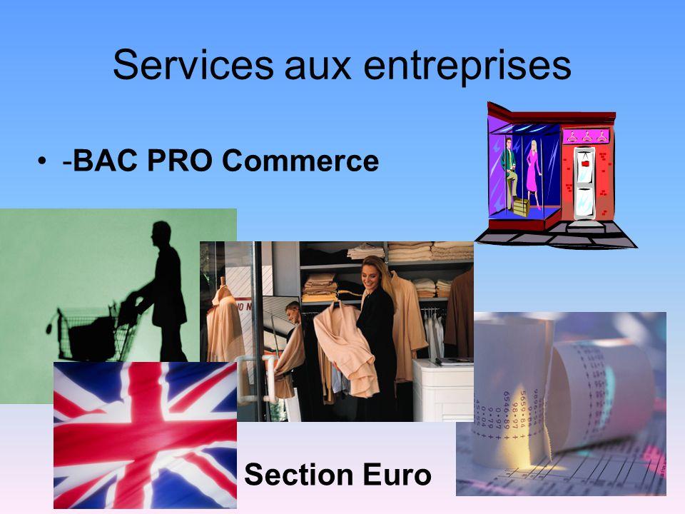 Services aux entreprises -BAC PRO Commerce Section Euro