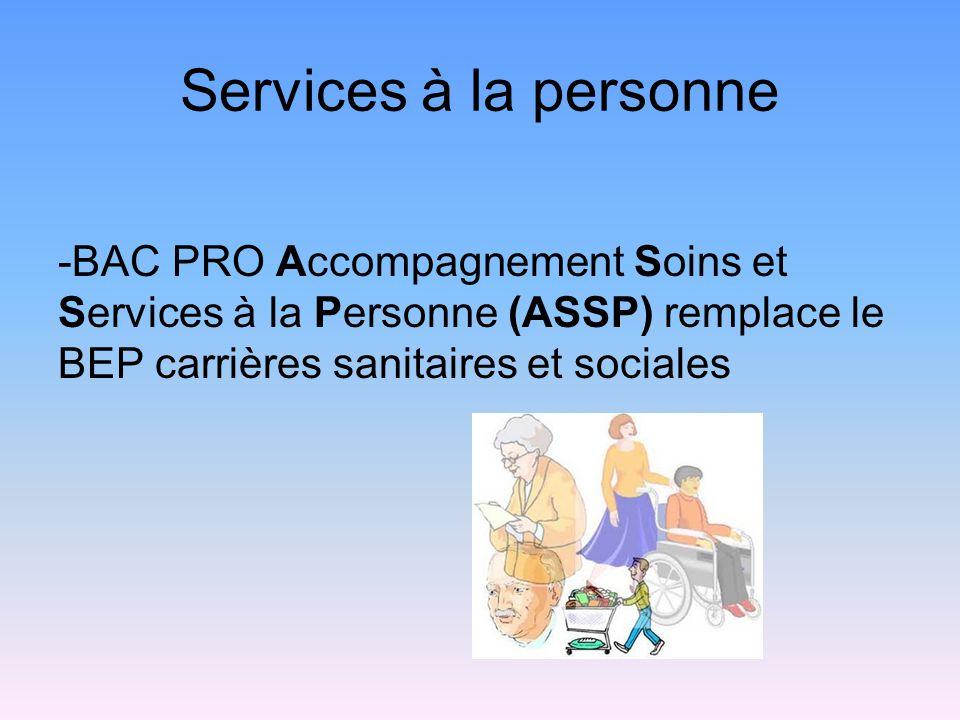 Services à la personne -BAC PRO Accompagnement Soins et Services à la Personne (ASSP) remplace le BEP carrières sanitaires et sociales