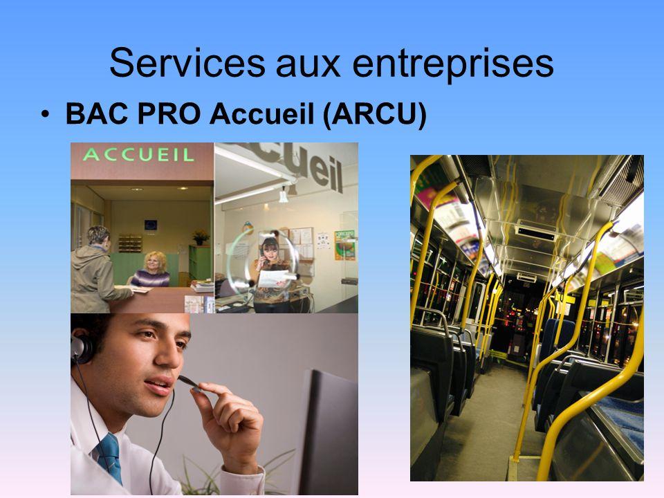 Services aux entreprises BAC PRO Accueil (ARCU)