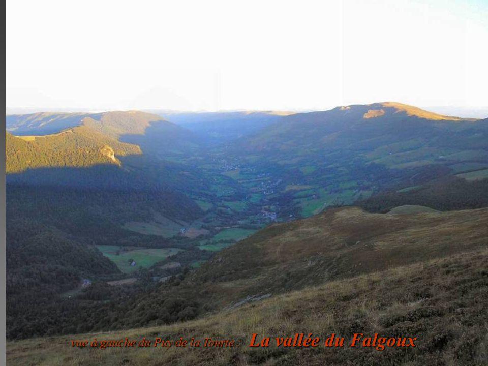 vue à gauche du Puy de la Tourte : La vallée du Falgoux vue à gauche du Puy de la Tourte : La vallée du Falgoux