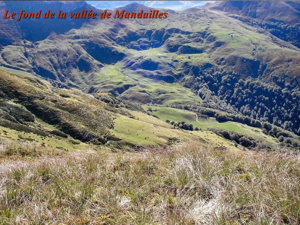 Le fond de la vallée de Mandailles